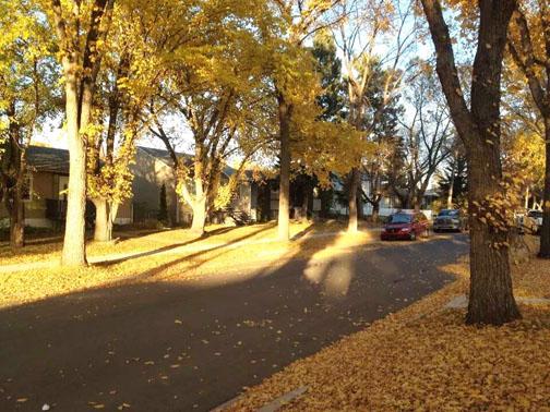 Autumn steven 2