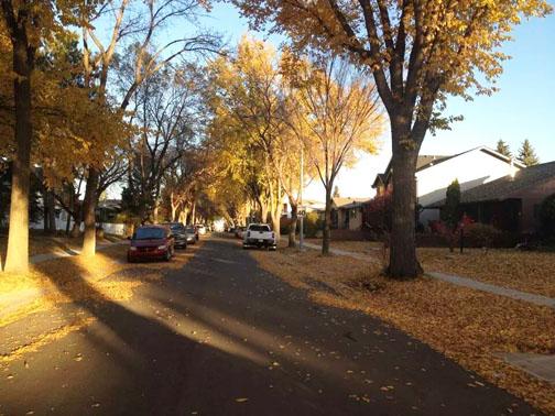 Autumn steven 3